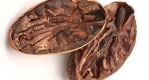 Шоколадова бъркотия