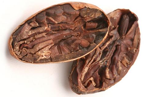Какаово зърно